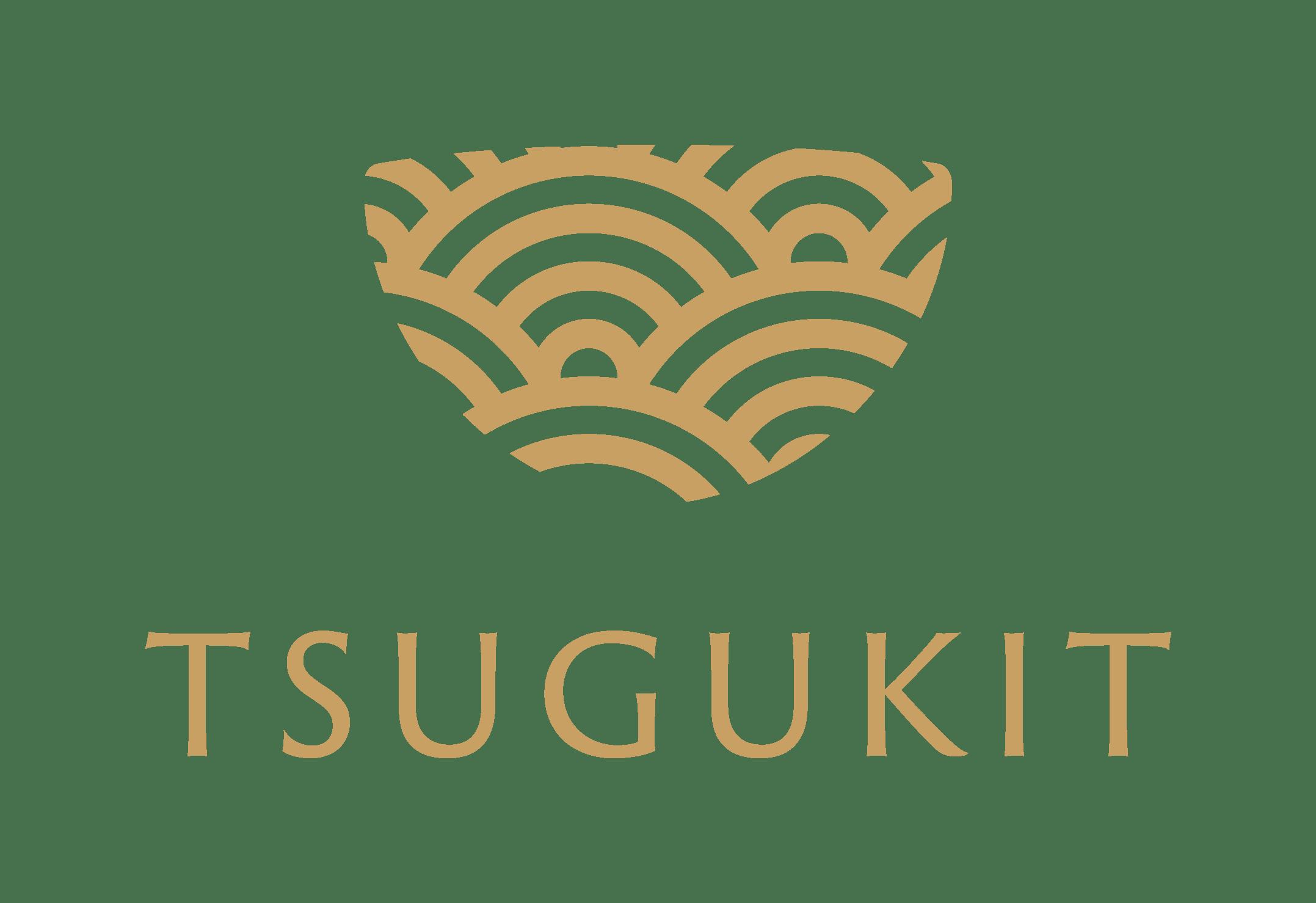 金継ぎキット初心者用【TSUGUKIT/つぐキット】 Kintsugi Kit for Beginners